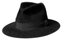 de-hoed-van-plasterk